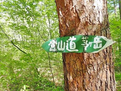 201854茅ケ岳 (2)
