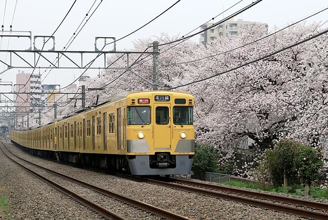 a-938A8776.jpg