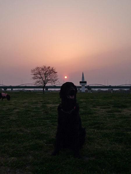 20180329夕陽