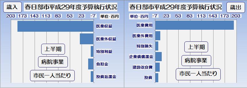 春日部市平成29年度上半期病院事業予算執行状況・グラフ2