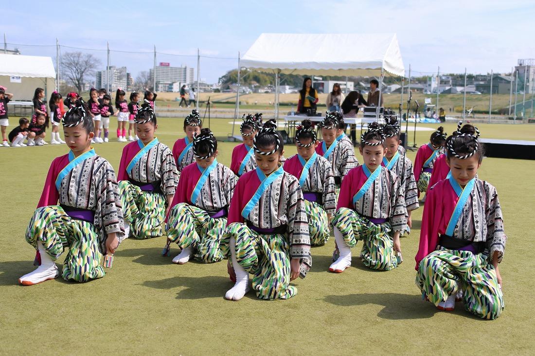 yodogawa18sakura 1