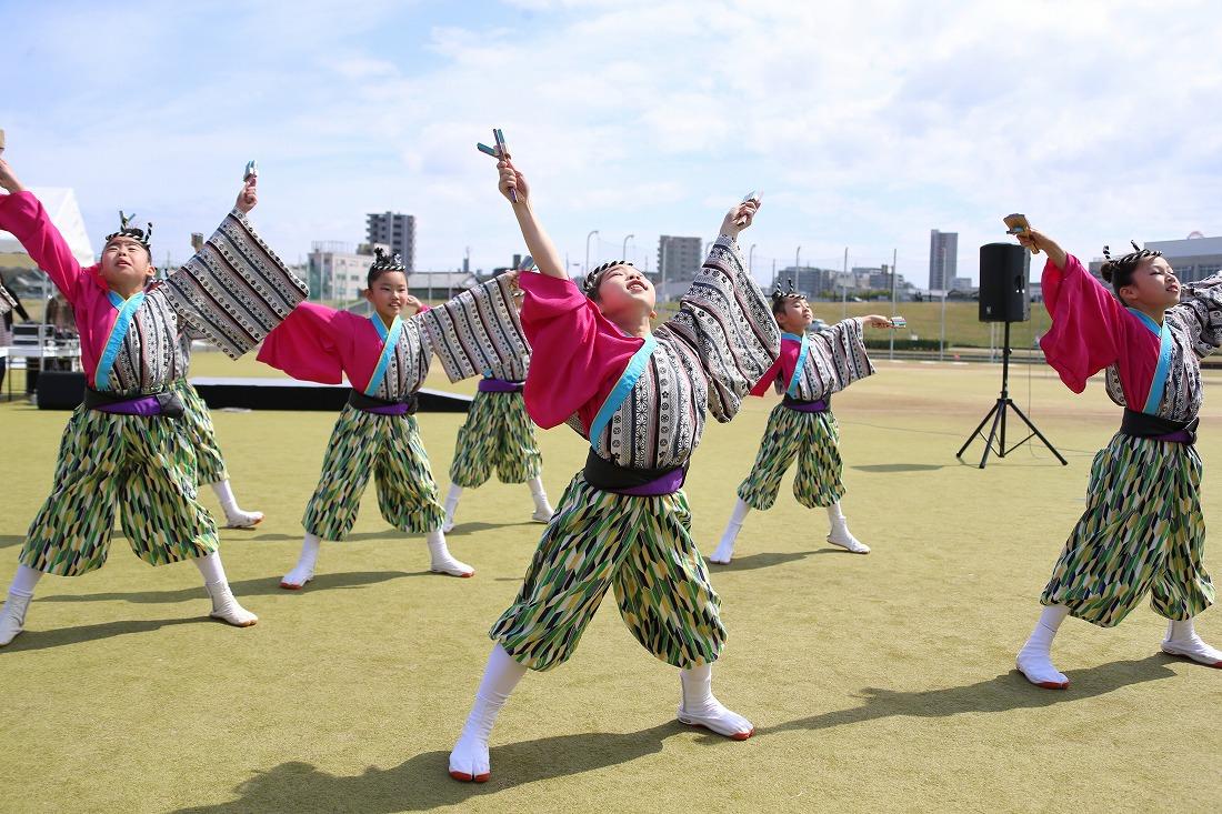 yodogawa18sakura 7