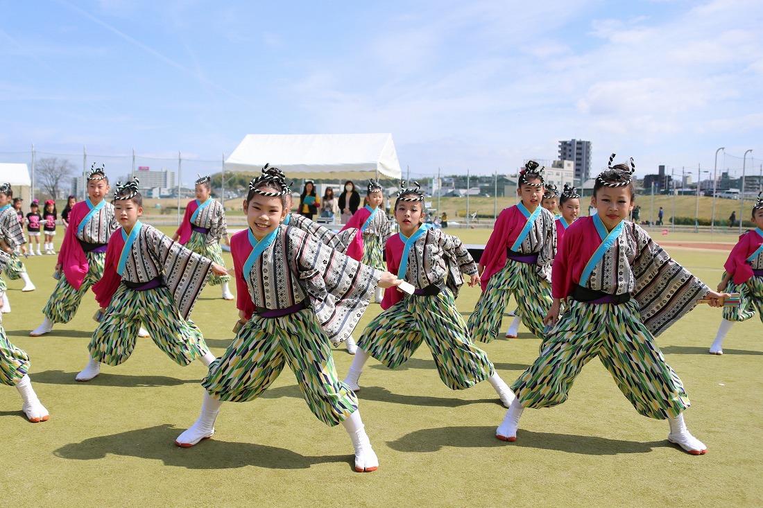 yodogawa18sakura 9