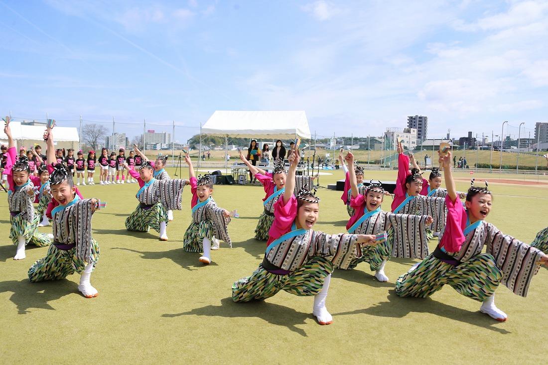 yodogawa18sakura 10