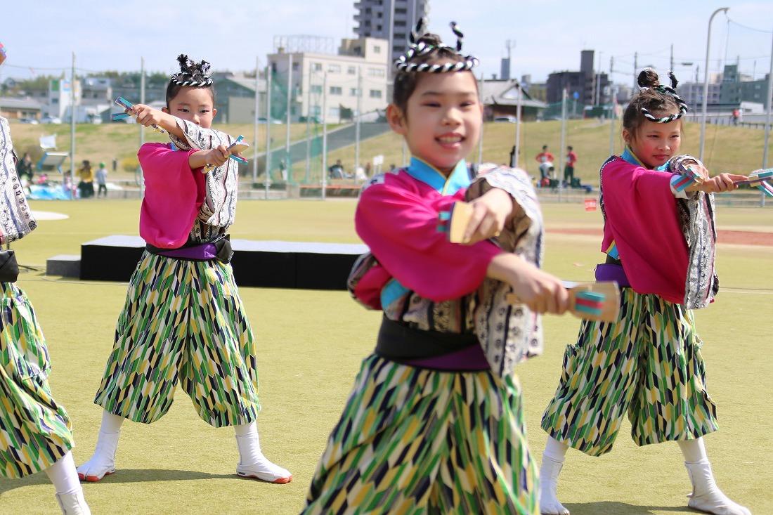 yodogawa18sakura 11