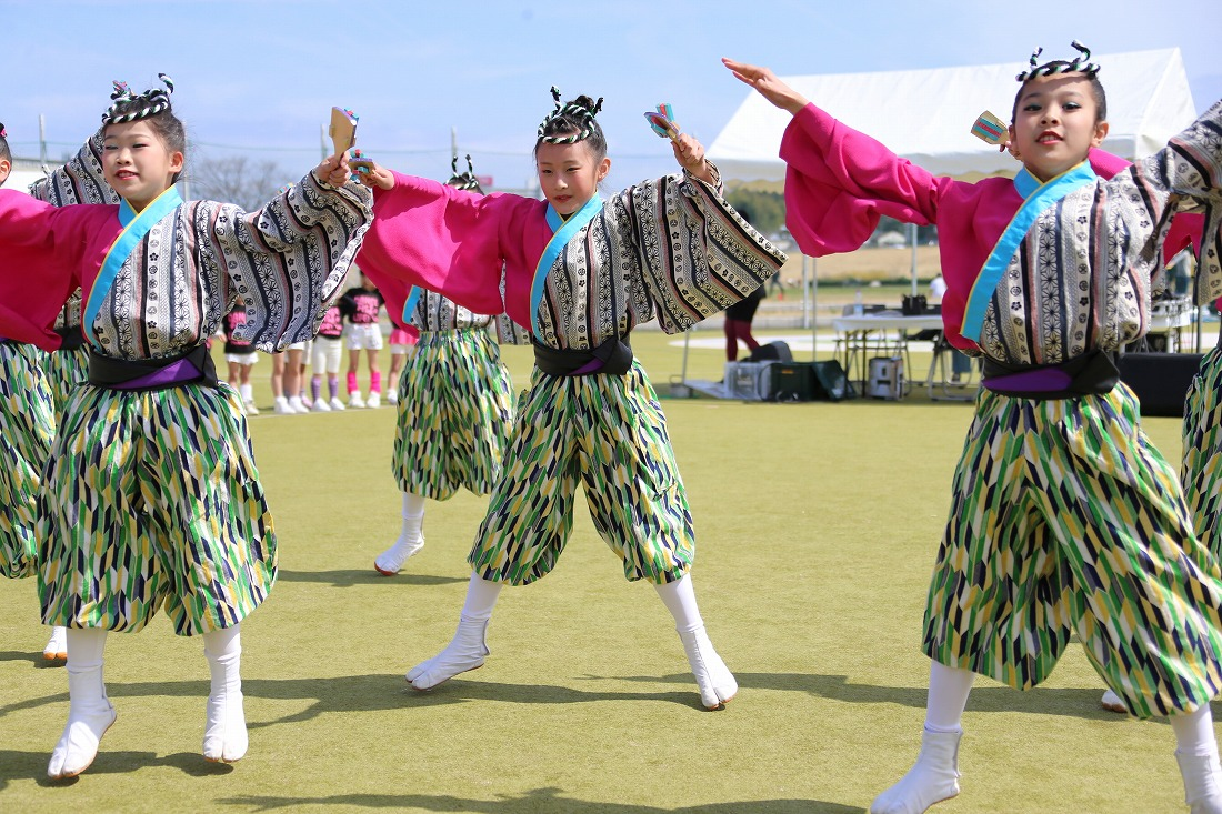 yodogawa18sakura 12