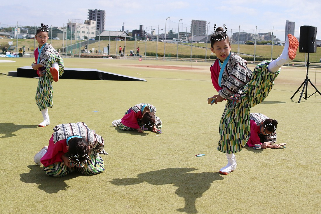yodogawa18sakura 13