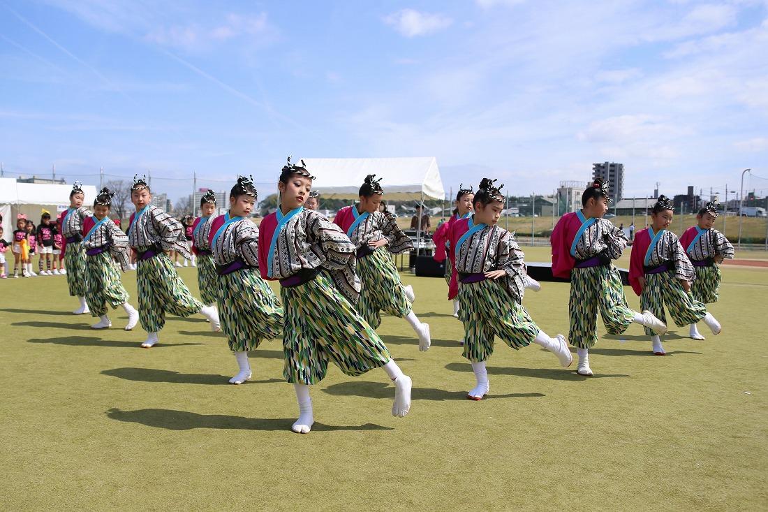 yodogawa18sakura 15