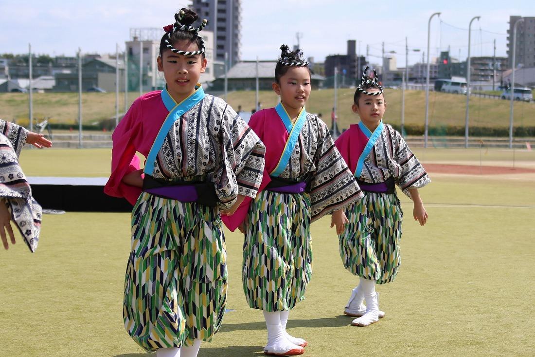 yodogawa18sakura 16
