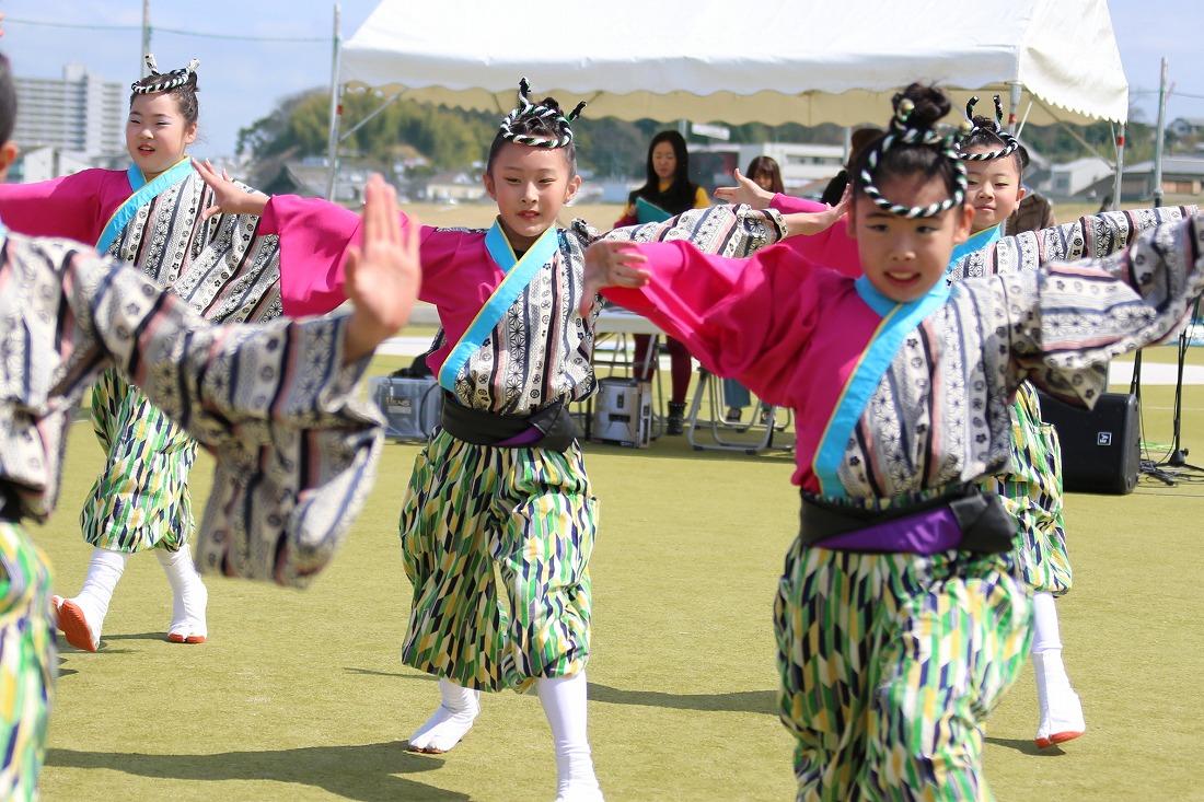 yodogawa18sakura 22