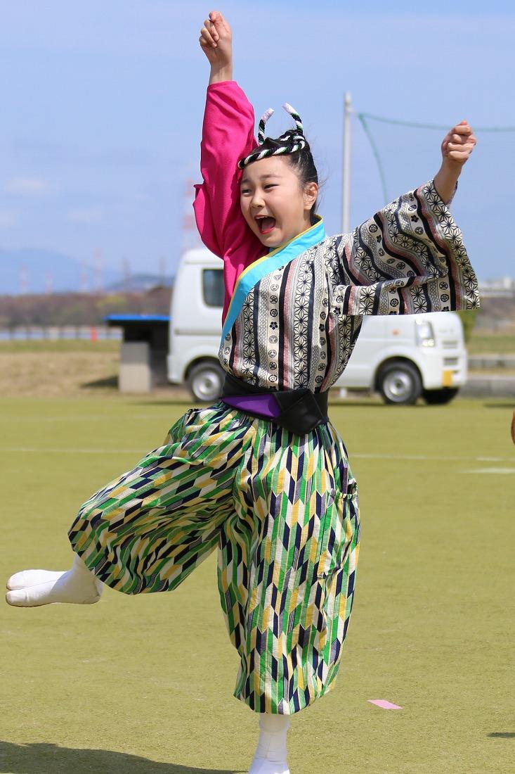 yodogawa18sakura 23