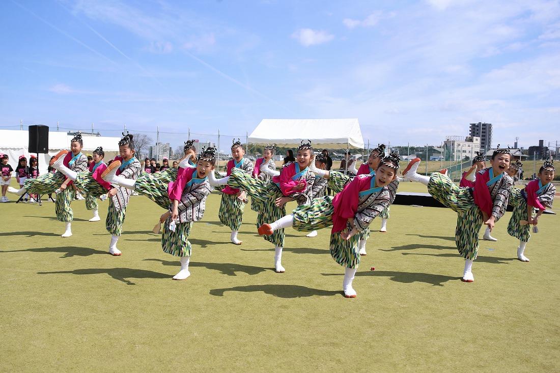 yodogawa18sakura 25