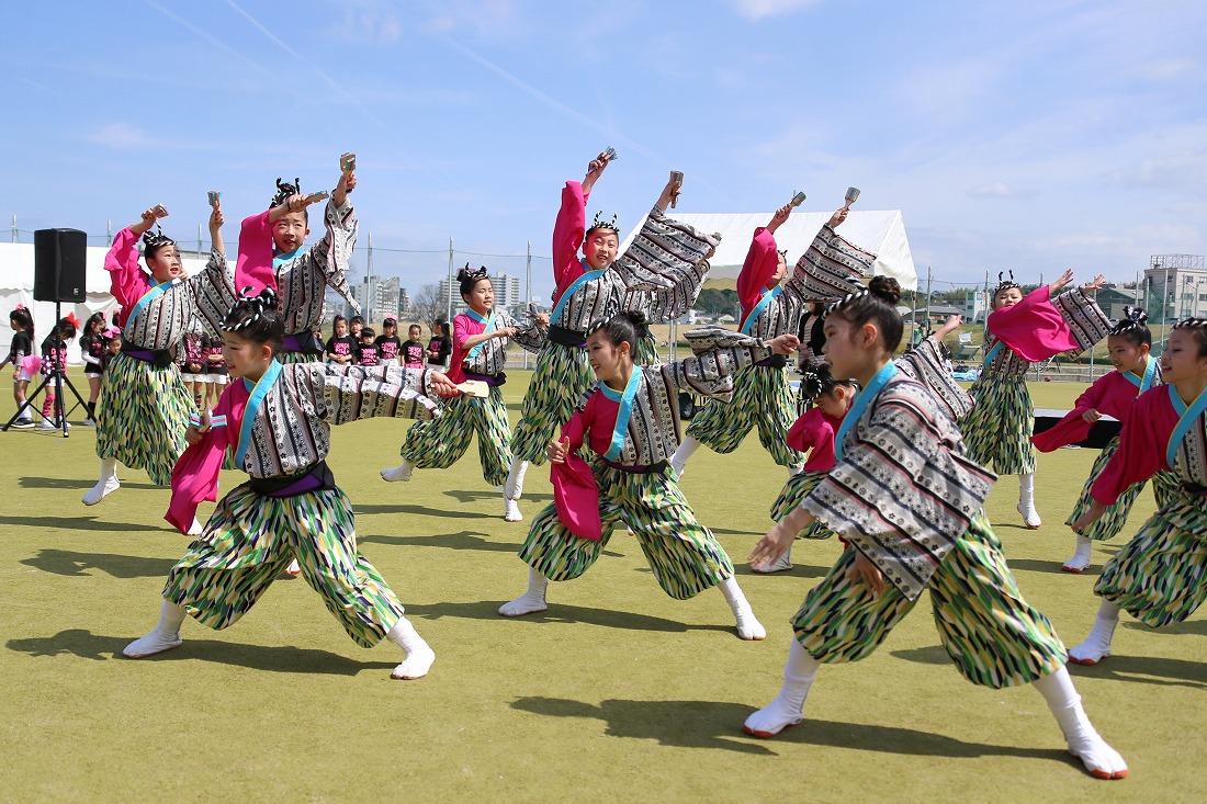 yodogawa18sakura 26