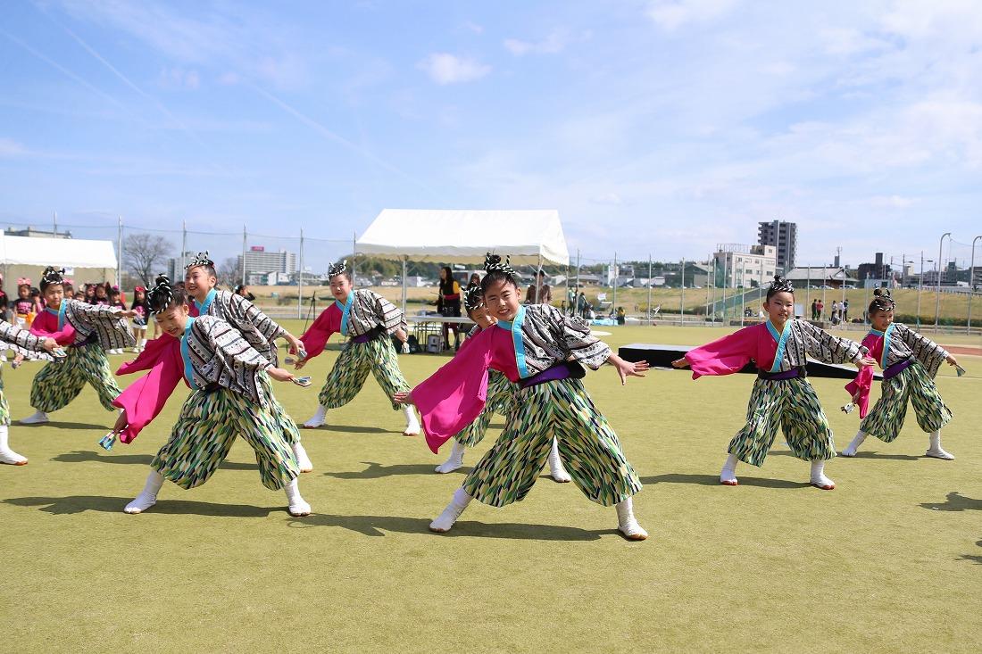 yodogawa18sakura 30