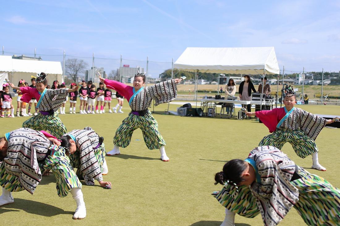 yodogawa18sakura 34