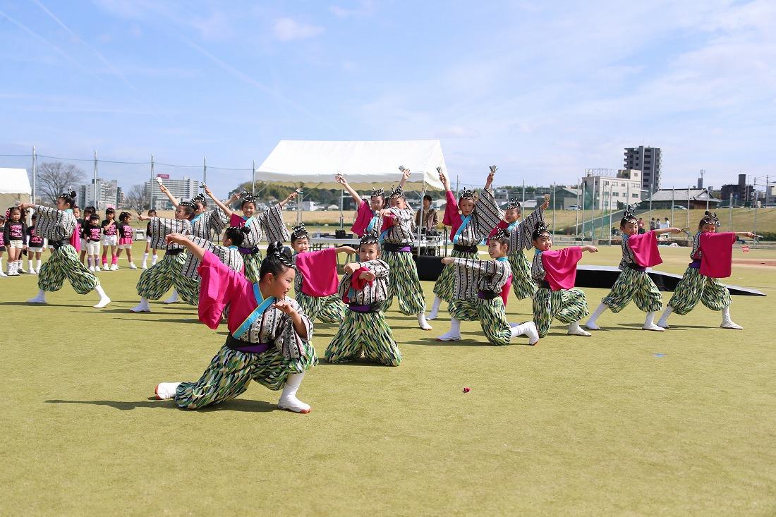 yodogawa18sakura 45