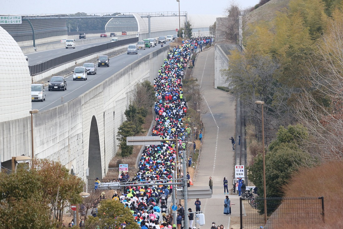 halfmarathon181-1.jpg