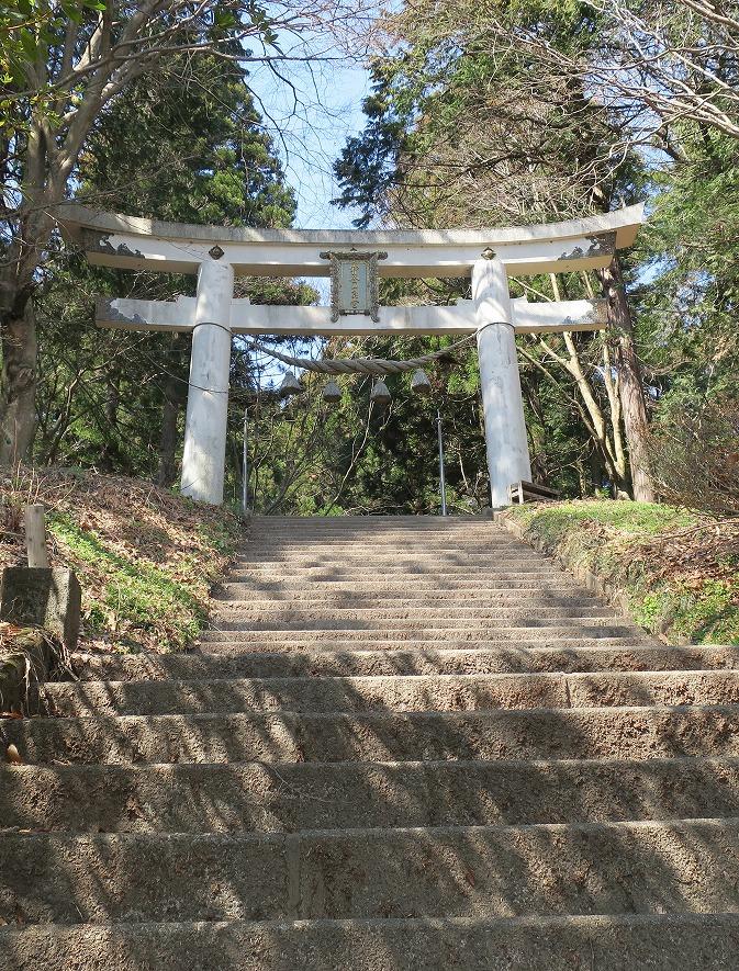 torii101_20180330181914af3.jpg