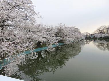 IMG_8632臥竜公園