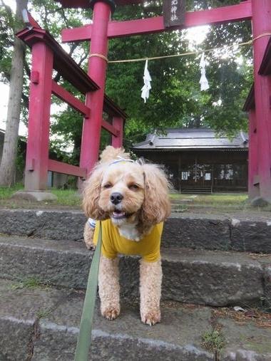 IMG_0387神社