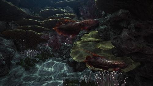 環境生物コンプ (6)