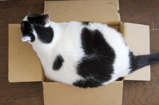 なな箱好き2