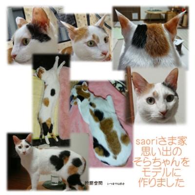 猫ちゃんの見本写真例
