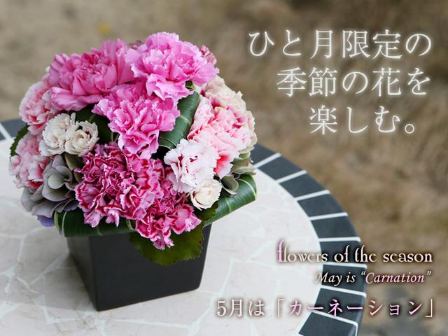母の日 カーネーション かわいい  アレンジ 花束 人気 全国発送 青 おしゃれ