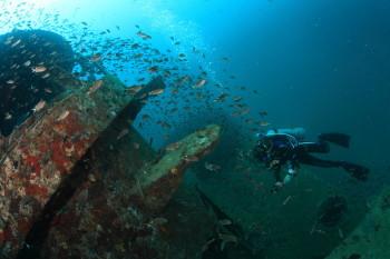 タオ島、HARUNA、沈船