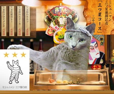 風景 猫の居酒屋