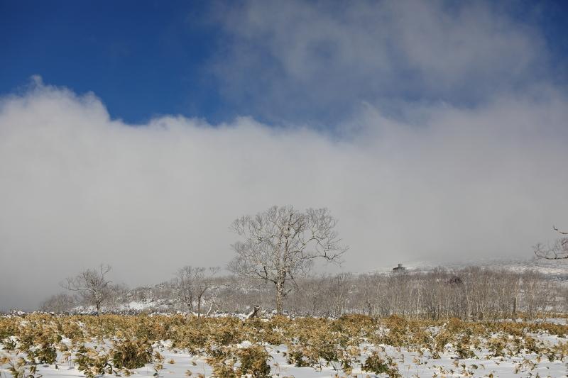 流れる雲 45260001