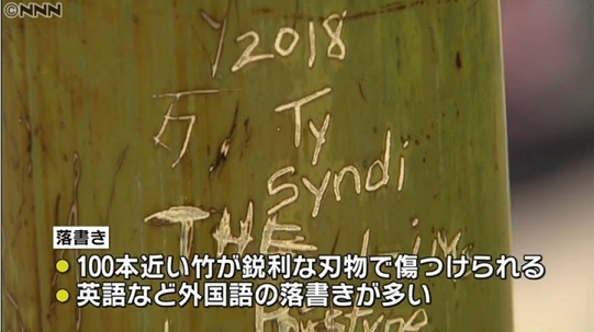 嵐山の竹林、100本以上に落書き→ハングルを頑なに写さないNHKと日テレ「英語など外国語の落書き」NNN