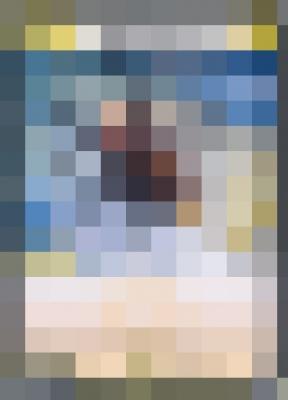 20180408モザイクイラストクイズ7
