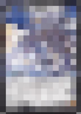 20180415モザイクイラストクイズ5