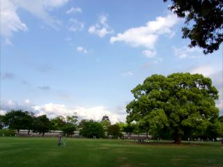熊本_熊本城_二の丸広場より2012_01