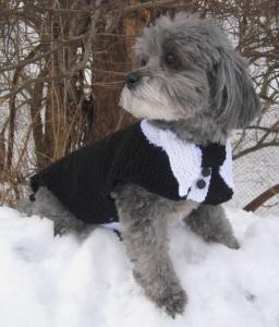 犬用タキシード_ニット_毛糸_結婚式