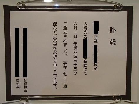 P6032994.jpg