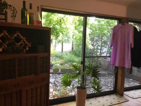 庭の眺め アオザイ