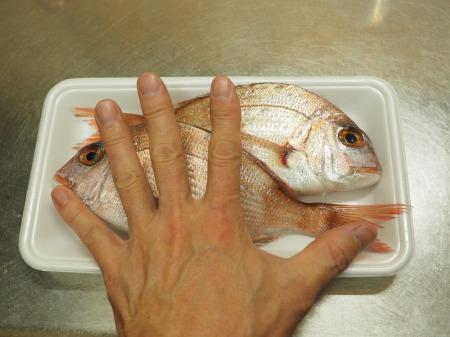 小鯛の煮付け029