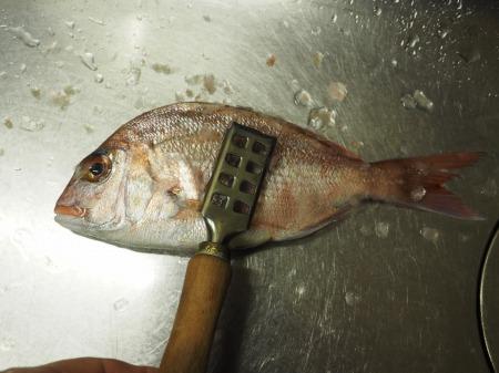 小鯛の煮付け030