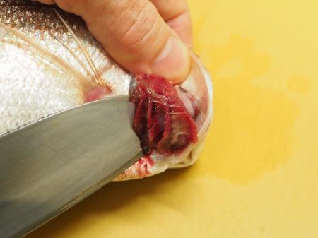 小鯛の煮付け035