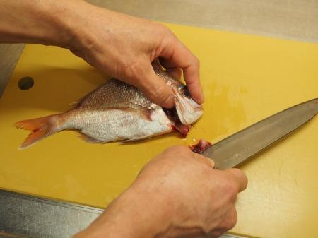 小鯛の煮付け041