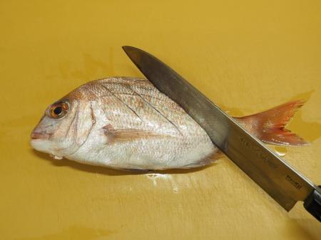 小鯛の煮付け047