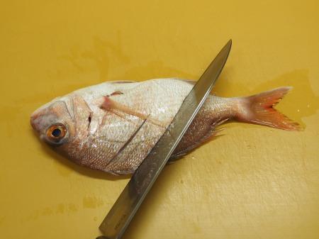 小鯛の煮付け048