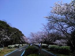 DSC_2578 海の中道公園