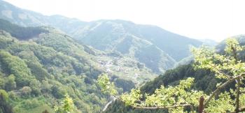 和歌山側の絶景