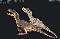 Rebor Velociraptor Gunn&Rose