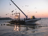 江の島片瀬漁協直売所