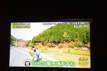 DSC_8950.jpg