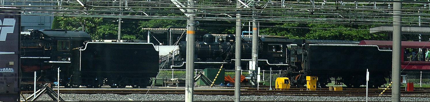 DSC_9257v.jpg